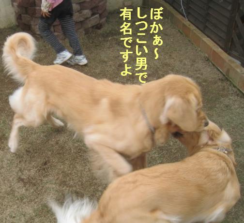 09IMG_3305.jpg