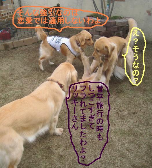 09IMG_3308.jpg