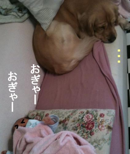 IMG_0231_2.jpg