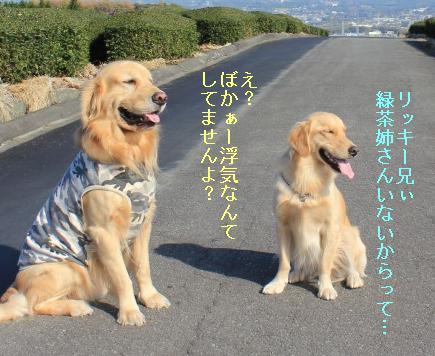 keikeiIMG_2224.jpg