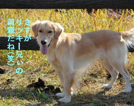 keikeiIMG_2316.jpg