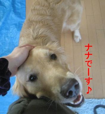 misatoIMG_3081.jpg