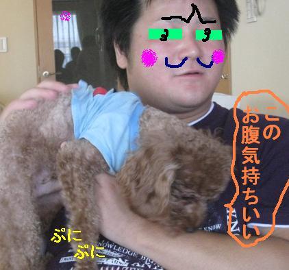 misatoIMG_3085.jpg