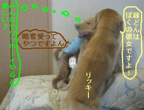 misatoIMG_3094.jpg
