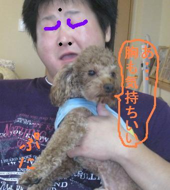 misatoIMG_3113.jpg