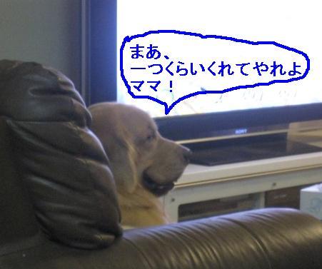 misatoIMG_3135.jpg
