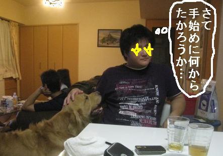 misatoIMG_3151.jpg