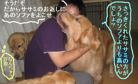 misatoIMG_3157.jpg