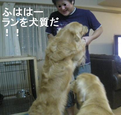 misatoIMG_3159.jpg