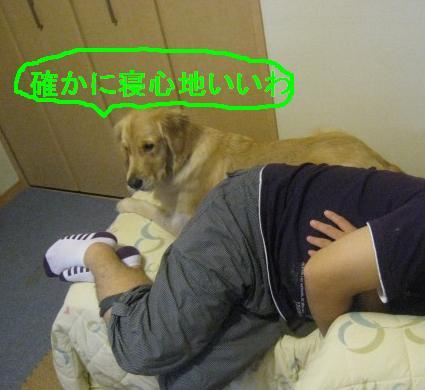 misatoIMG_3170.jpg