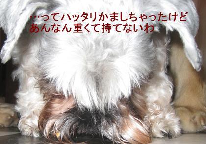 rickyIMG_3691.jpg
