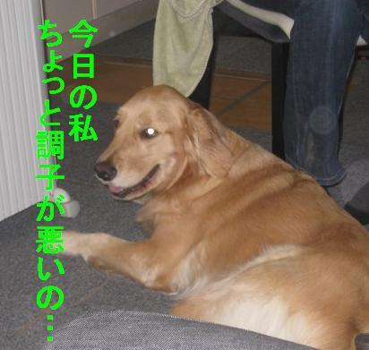 rickyIMG_4159.jpg
