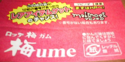 20100608_Mabinogi_Ume02.jpg