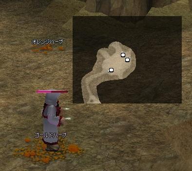 20100911_ピシス洞窟赤色アリスポット