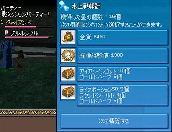 20101005_Ikada_Case2.jpg