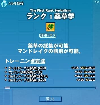 20120216_yakusou.jpg