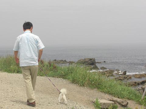 2009 海