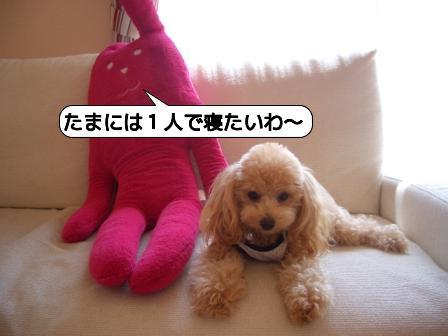 20090901_104429.jpg
