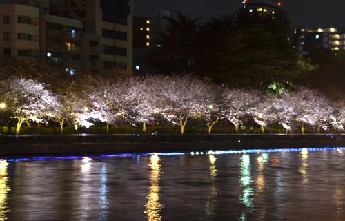 201204Kyoto_0838.jpg