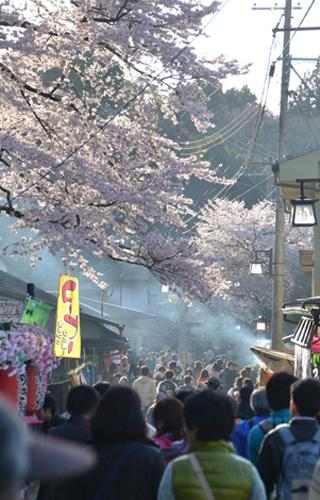 201204yoshino_1188.jpg
