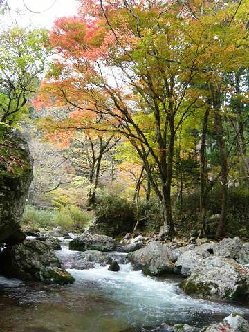 odamiyama_1.jpg