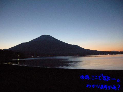 雄大な富士山と闇に乗じる野愛