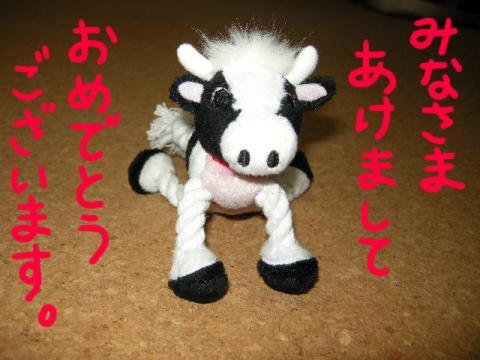 牛からのご挨拶
