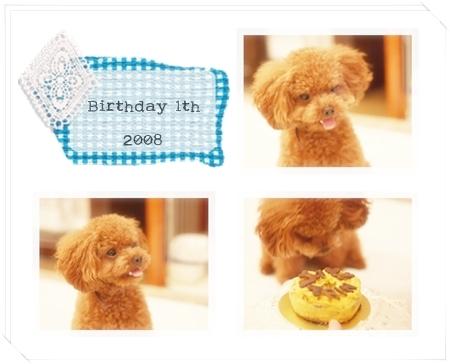 Happy Birthday 1th