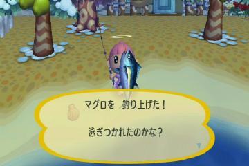 マグロ一本釣り☆