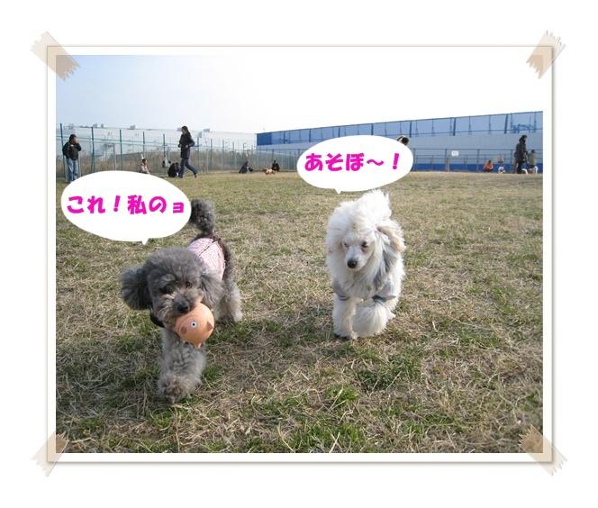 IMG_8569.jpg