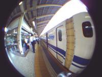 PICT0010(1).jpg