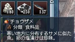 チョウザメ1