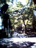 Photo006003.jpg