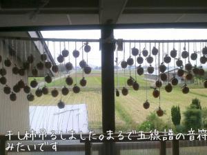 干し柿つくり