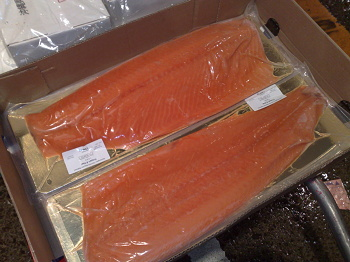 FROZENSALMON.jpg