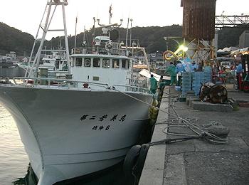 yoshimi_2.jpg