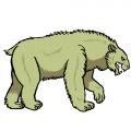 """""""クマの歯"""""""