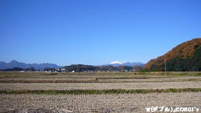 2008120101.jpg