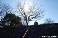 2008120306.jpg