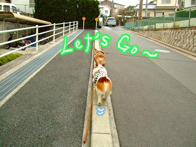 レッツGO~♪