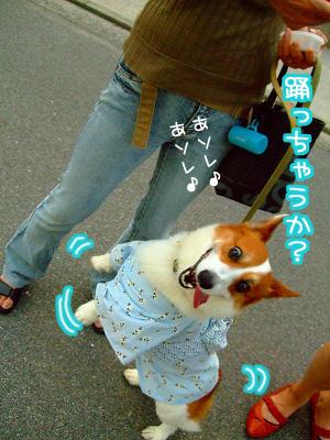 踊っちゃうか?(笑)