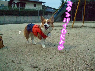 スタンバイOKよ☆