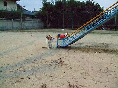 遊んでる風(笑)