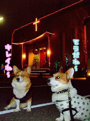 教会のイルミ