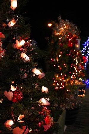 色々なクリスマスツリー