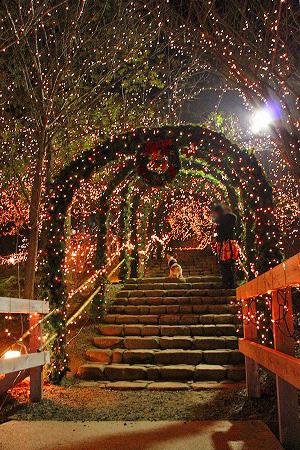 クリスマス仕様な階段♪