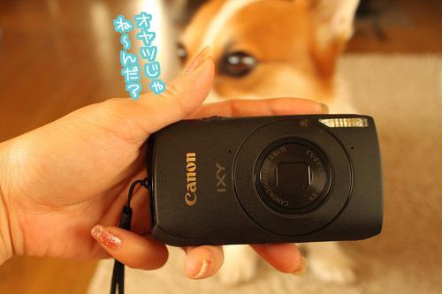 おNewなカメラ☆
