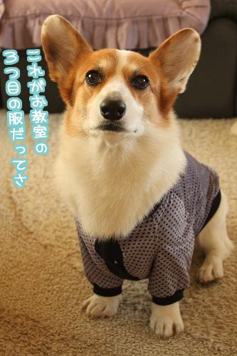 3つ目の服~