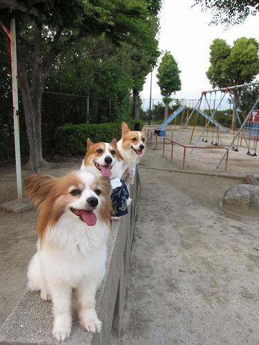 お山の公園で3ショット☆