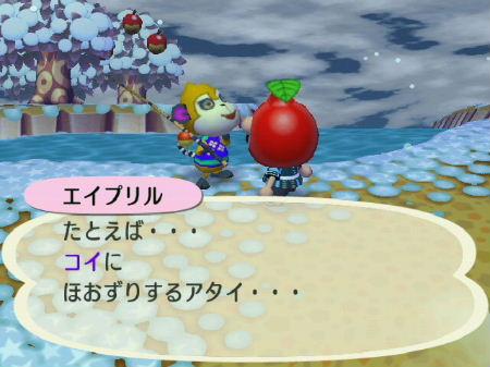2008_1229クリスマス~年末0045